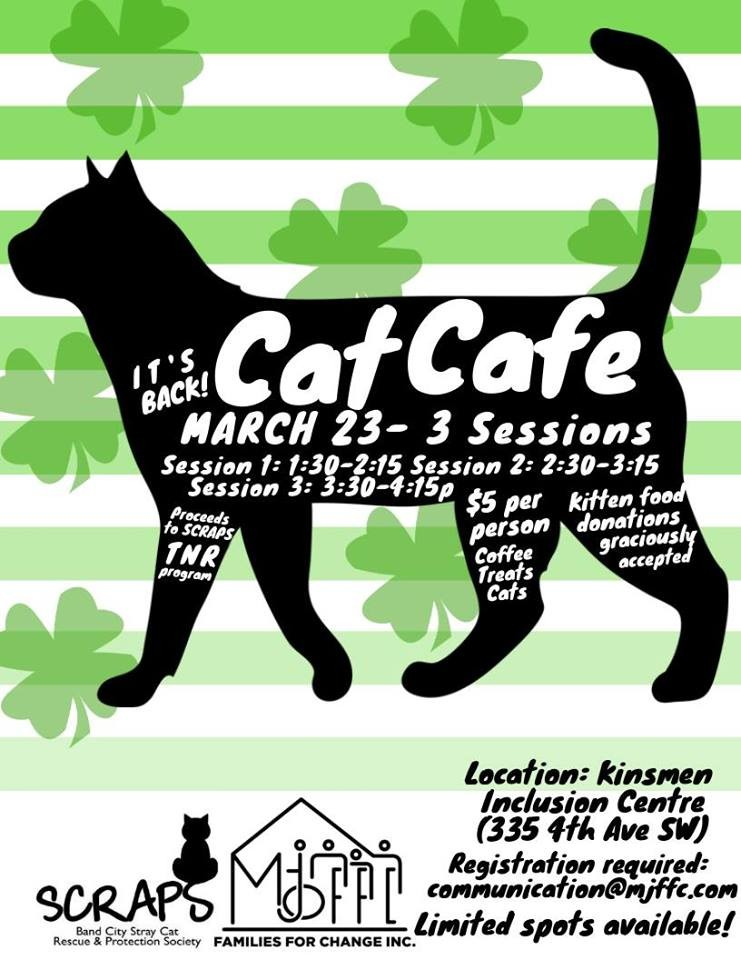 March Cat Cafe! (Session #1)